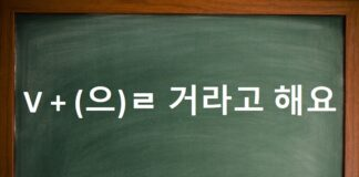 Động từ + (으)ㄹ 거라고 해요(했어요).
